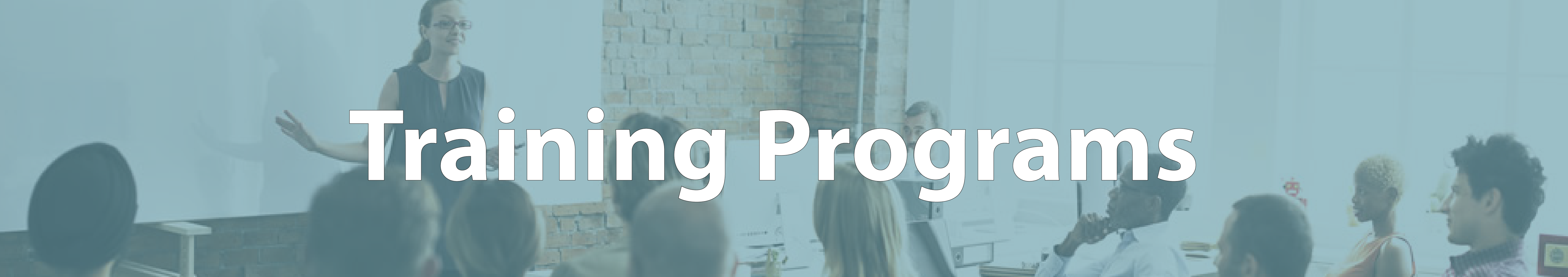 marketing consulting firms Training Programs Training 01